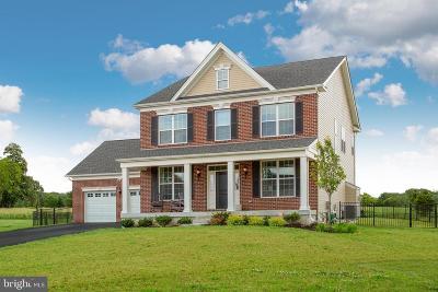 Bucks County Single Family Home For Sale: 1229 Hockley Drive