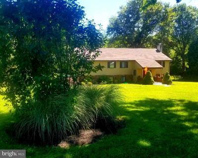 Bucks County Single Family Home For Sale: 1024 Washington Avenue