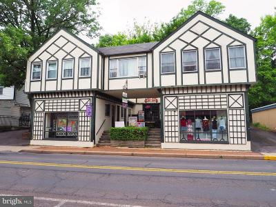 Solebury, New Hope Commercial For Sale: 129 S Main Street