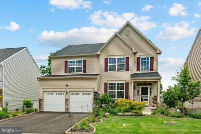 Bucks County Single Family Home For Sale: 409 Hickory Drive