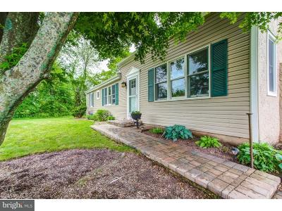 Bucks County Single Family Home For Sale: 6055 Stump Road
