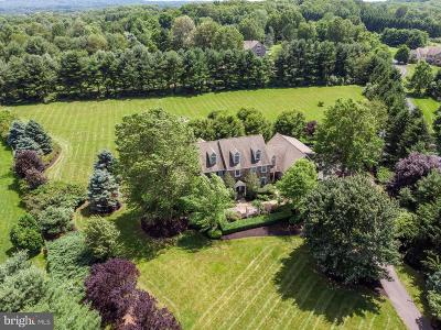 Solebury, New Hope Single Family Home For Sale: 9 Crestwood Circle