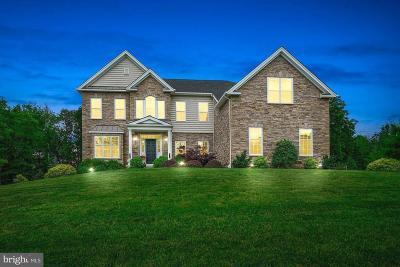 Single Family Home For Sale: 169 Nettles Lane
