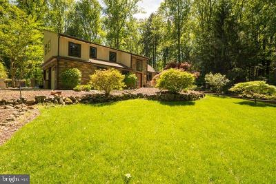 Solebury, New Hope Single Family Home For Sale: 7 High Road