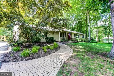 Doylestown Single Family Home For Sale: 80 Springs Drive