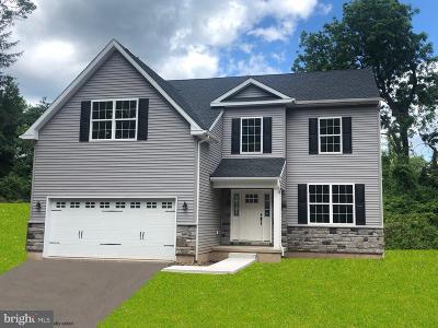 Bucks County Single Family Home For Sale: 1474 Chestnut Ridge Road