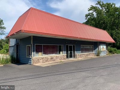 Bucks County Commercial For Sale: 9755 Easton Road