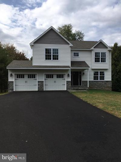 Bucks County Single Family Home For Sale: 2894 Highland Avenue