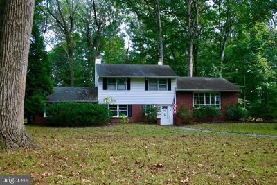 Bucks County Single Family Home For Sale: 93 Buttonwood Lane
