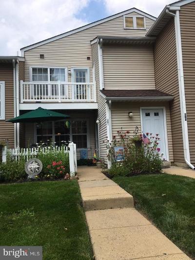 Bucks County Condo For Sale: 301 Ferris Lane #C1