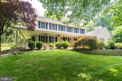 Bucks County Single Family Home For Sale: 1329 Hilltown Pike
