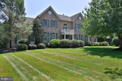 Bucks County Single Family Home For Sale: 4743 Frost Lane