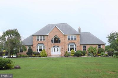 Chalfont Single Family Home For Sale: 3769 Pickertown Road