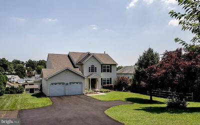 Bucks County Single Family Home For Sale: 3845 Brownsville Road