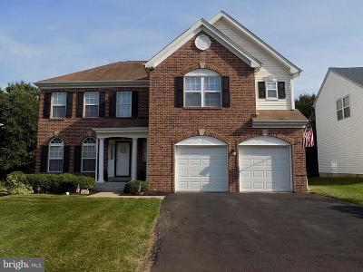 Bucks County Single Family Home For Sale: 167 Equestrian Drive