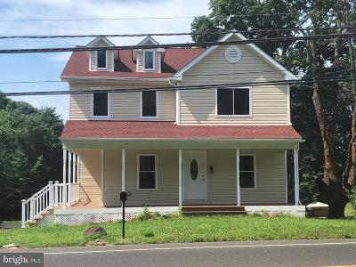 Doylestown Single Family Home For Sale: 450 E Swamp Road