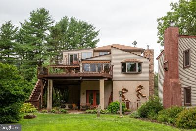 Bucks County Single Family Home For Sale: 1505 River Road