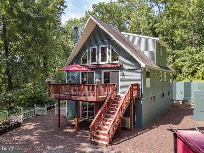 Single Family Home For Sale: 241 Spring Hill