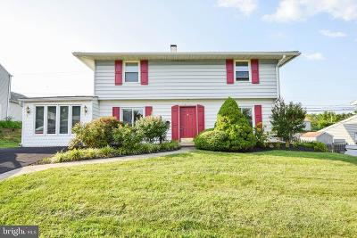 Levittown Single Family Home For Sale: 129 Terrace Road