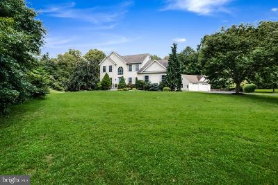 Doylestown Single Family Home For Sale: 195 S Shady Retreat Road