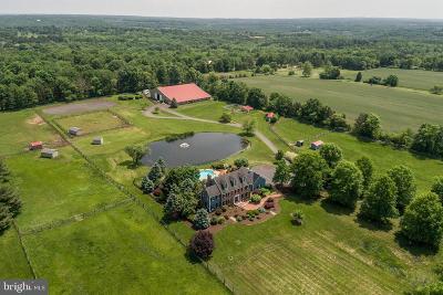 Farm For Sale: 553 Geigel Hill Road