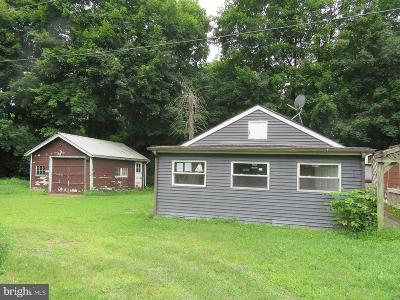 Bucks County Single Family Home For Sale: 7422 Old Easton Road