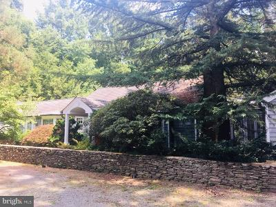 Bucks County Single Family Home For Sale: 5926 Mechanicsville Road