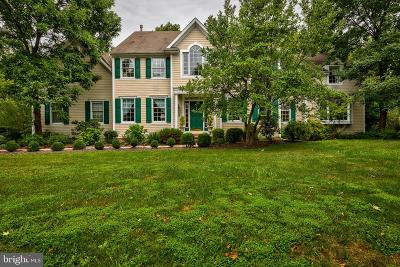 Bucks County Single Family Home For Sale: 303 Stoneybrook Road
