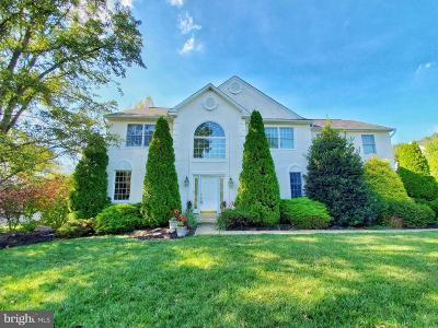 Homes for Sale in North Branch, Pipersville, PA