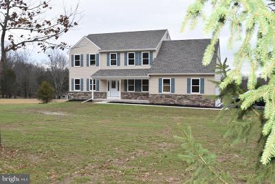 Bucks County Single Family Home For Sale: 2401 Camp Rock Hill Road