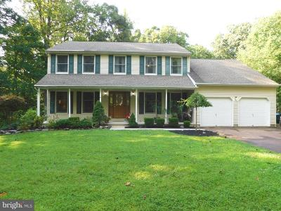 Bucks County Single Family Home For Sale: 2130 Sterners Road
