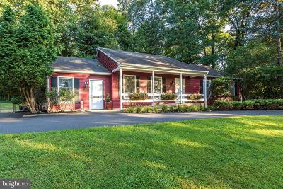 Bucks County Single Family Home For Sale: 5906 Mechanicsville Road