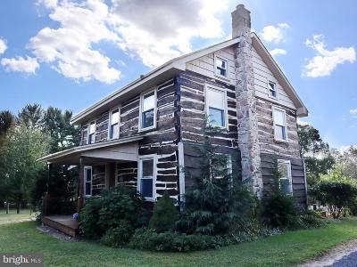 Bucks County Single Family Home For Sale: 2520 Richlandtown Pike