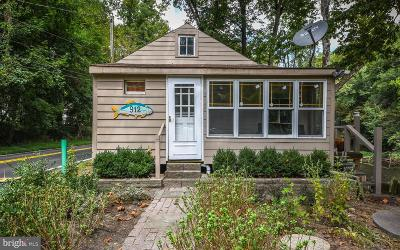 Bucks County Single Family Home For Sale: 912 River Road