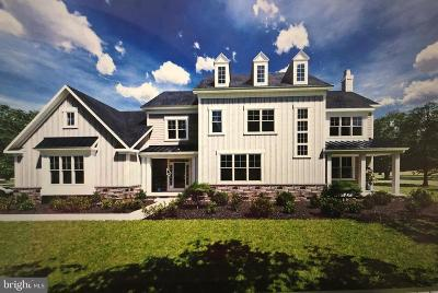 Bucks County Single Family Home For Sale: 87 Walter Road