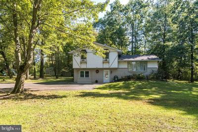 Bucks County Single Family Home For Sale: 1613 Maple Road