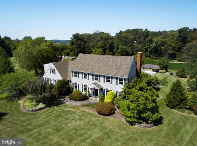 Doylestown Single Family Home For Sale: 4805 Point Pleasant Pike