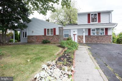 Bucks County Single Family Home For Sale: 20 Goodturn Road