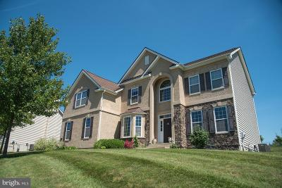 Bucks County Single Family Home For Sale: 29 Beechwood Boulevard