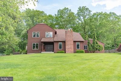 Newtown Single Family Home For Sale: 79 Skoures Lane