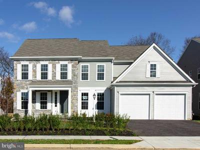 Cumberland County Single Family Home For Sale: 79 Edris Lane