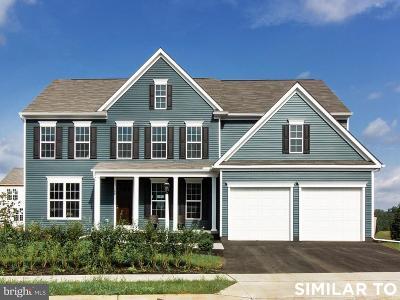 Cumberland County Single Family Home For Sale: 81 Edris Lane