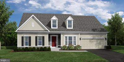 Camp Hill, Mechanicsburg Single Family Home For Sale: The Executive