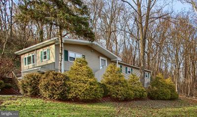 Enola Single Family Home For Sale: 198 Creekside Drive