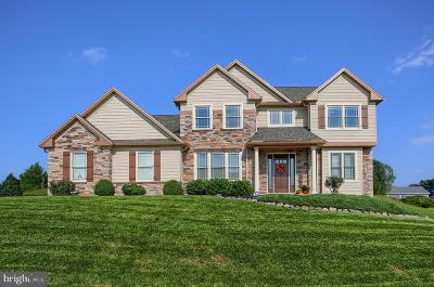 Camp Hill, Mechanicsburg Single Family Home For Sale: 16 Marina Drive