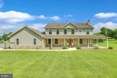 Shippensburg Single Family Home For Sale: 1824 Ritner Highway