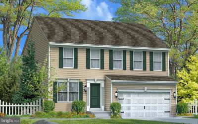 Camp Hill, Mechanicsburg Single Family Home For Sale: The Hamilton