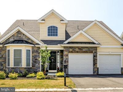 Mechanicsburg Condo For Sale: 217 Loyal Drive