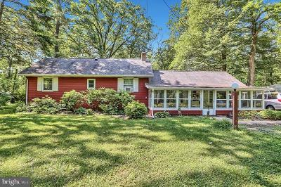 Boiling Springs Single Family Home For Sale: 425 Criswell Drive