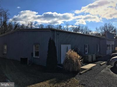 Cumberland County Commercial For Sale: 301 S Penn Street